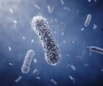 Engineered protein from flesh-eating bacteria acts as molecular 'superglue'