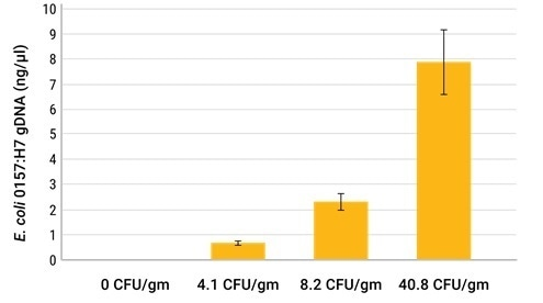 Comparison of total DNA and E. coli 0157:H7 DNA extracted from cilantro samples spiked with the indicated amounts of E. coli 0157:H7 bacteria. The concentration of E. coli 0157:H7 DNA was assessed by qPCR with specific primers.