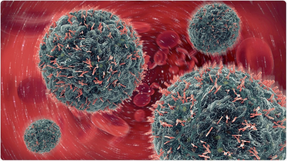 Cells in the immune system