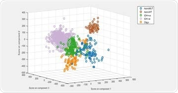 Principal component-linear discriminant analysis (PCA-LDA) was used to build a supervised classification model. The model demonstrated 80% to 95% sensitivity and specificity for predicting the five glioma genetic subtypes.