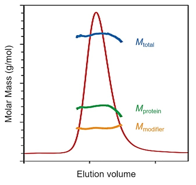 SEC-MALS determination of glycosylation or membrane protein loading of lipids