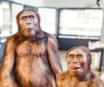Neanderthals could have died out due to climate change