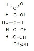 Fischer projection of D-glucose in its open chain form