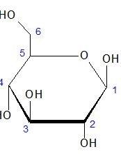 Projecção de Haworth para o formulário cíclico da D-glicose