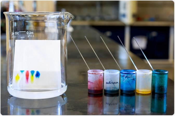 Chemistry of thin layer chromatography with plate, solvent and samples. Image Credit: ggw / Shutterstock