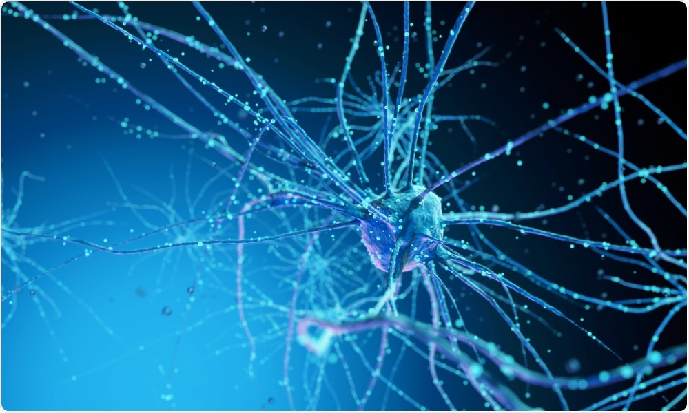Nerve cells are affected in Parkinson