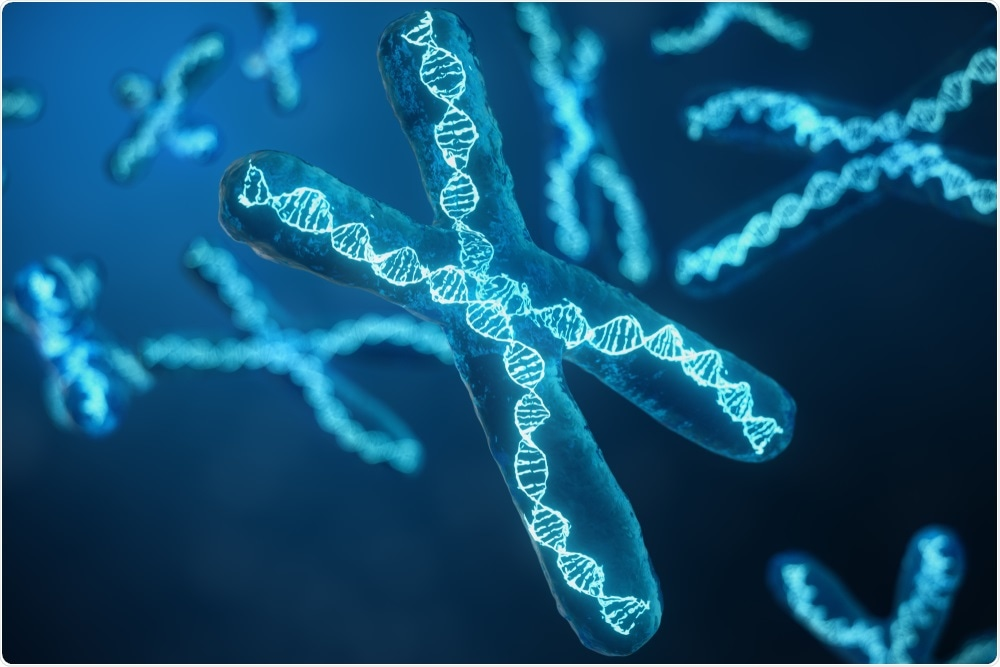 Chromosome with genetic material - By Ustyna Shevchuk