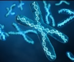 Researchers discover how cancer cells avoid genetic meltdown