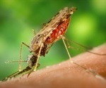 New leishmaniasis look-alike parasitic infection reported