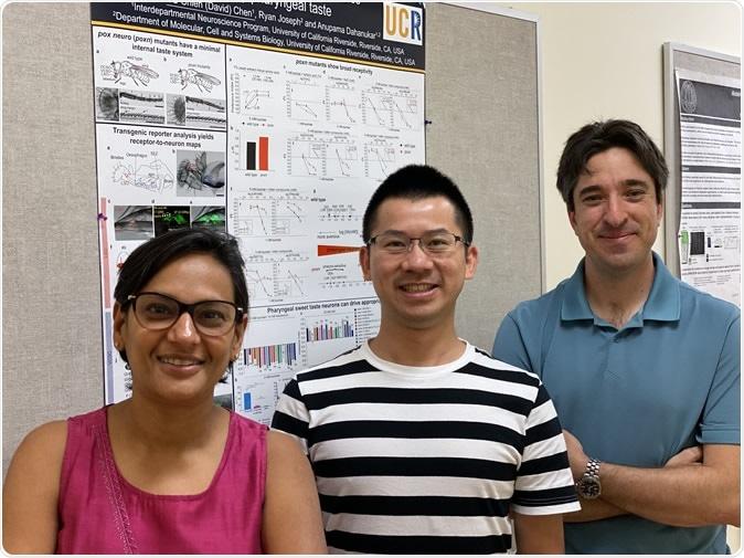 Anupama Dahanukar, David Chen (center), and Ryan Matthew Joseph of UC Riverside. Image Credit: Dahanukar lab, UC Riverside.