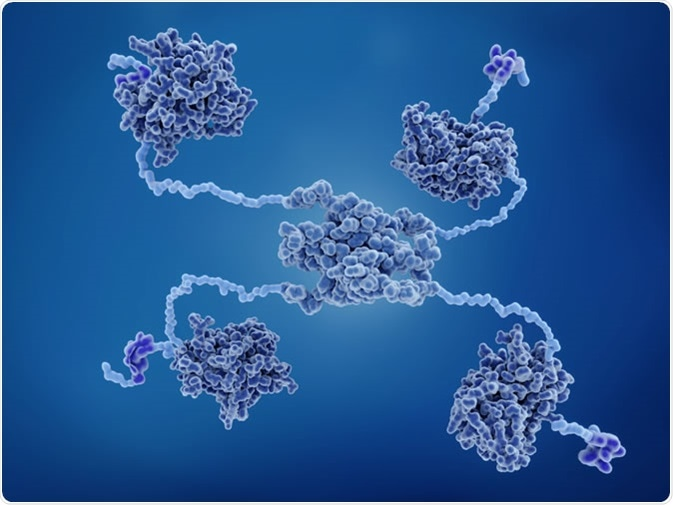 proteína do supressor do tumor p53. Crédito de imagem: Juan Gaertner/Shutterstock