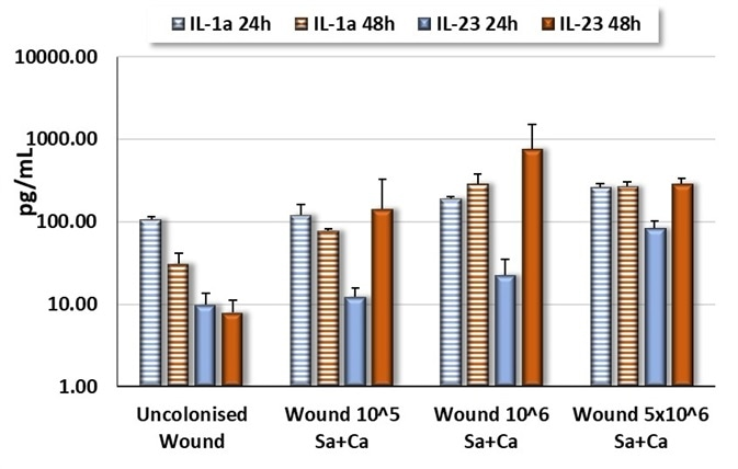 Comparison between IL-1α and IL-23 production by wounded Labskin4.5 infected with a mix of S. aureus and C. albicans.