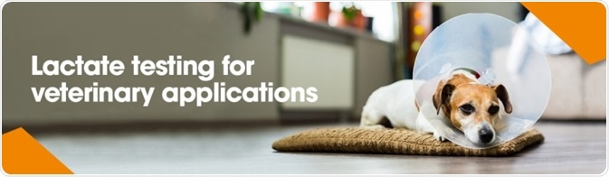 Veterinary Applications of Lactate Testing