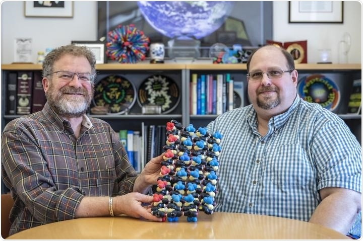 Ronald Zuckermann (left) and Michael Connolly hold a model of a protein in a beta sheet arrangement.