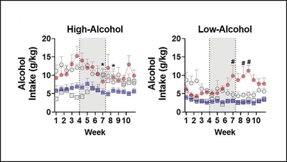 Ketamine may be viable treatment option for male alcohol use disorder patients