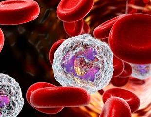 Vaping wrecks immune cell function, increases infection risk
