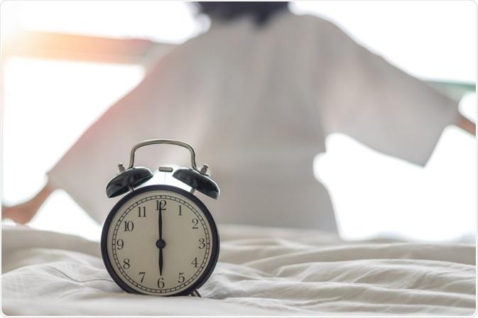 circadian rhythmn