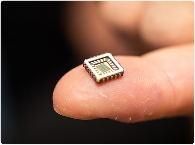 One of the tiny chips in its protective casing.
