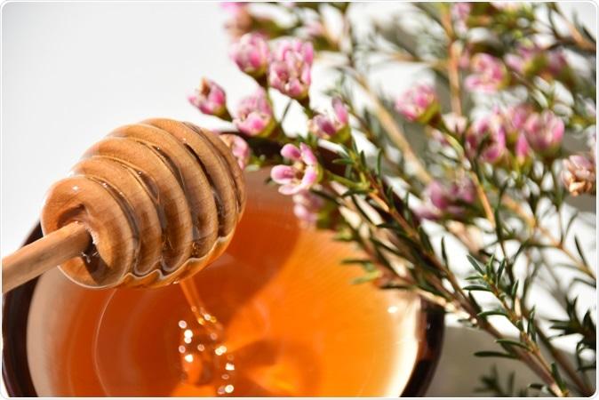 Manuka honey. Image Credit: Liga Cerina / Shutterstock