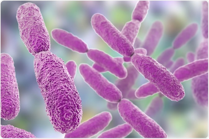 Bacteria Klebsiella, 3D illustration Credit: Kateryna Kon / Shutterstock