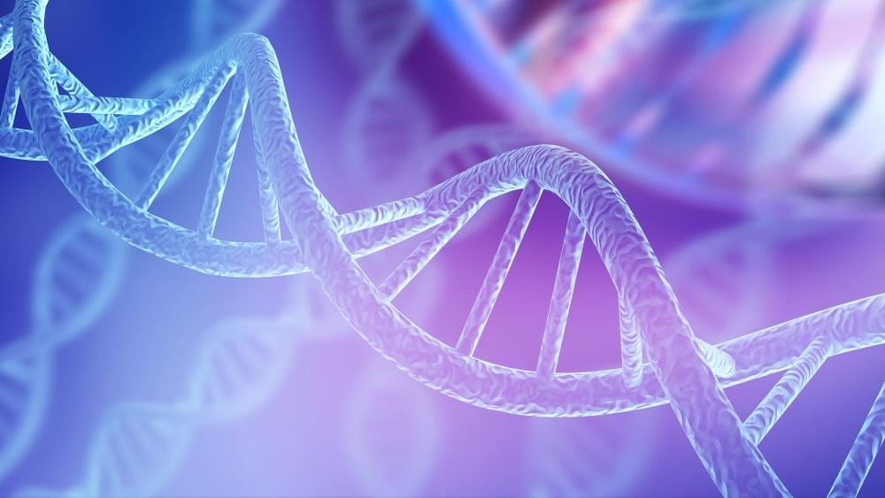 chimera DNA