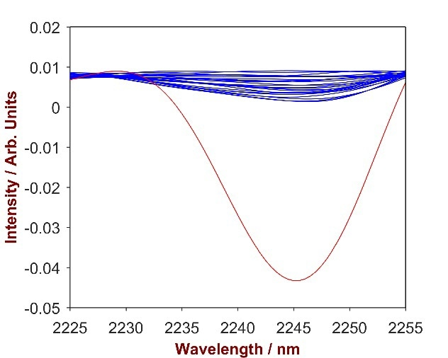 2nd derivative spectra of 12 Polyquaternium-7-shampoo mixtures with Polyquaternium-7concentration differing from 0.2-1.9% (blue). The overlay with pure Polyquaternium-7 (red) identifies the significant wavelength region of 2225-2250 nm.