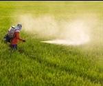 Common herbicide found to increase the risk of Non-Hodgkin Lymphoma