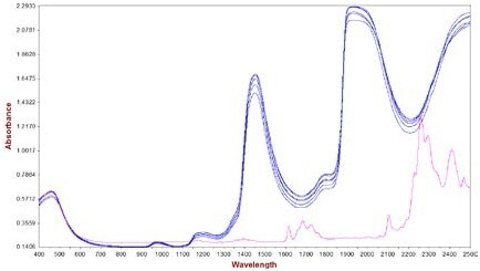 Spectra of hair cream samples with various concentrations of active ingredient (0.0% to 3.1%). The pure AI is displayed in pink, which was used to specify bands of interest for the active ingredient (1550 nm - 1750 nm and 2210 nm - 2340 nm).