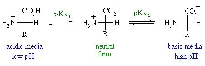 relationship between the pH and pKa of an amino acid