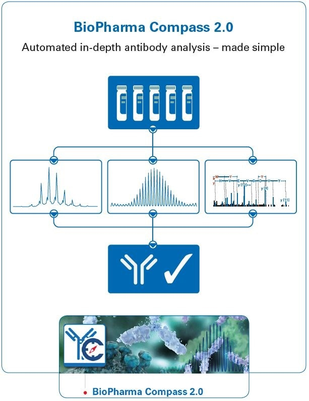 Graphical abstract, showing the use of BioPharma Compass 2.0 for automated antibody characterization using intact, subunit domain and bottom-up approaches. The software also contains other features not shown here, including workflows for MALDI and ETD, and a Regulatory Toolkit.