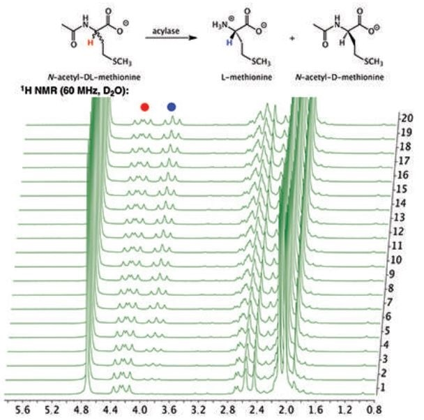 Stacked plot of 1H NMR spectra of the hydrolysis of N-acetyl-DL-methionine by porcine acylase to produce L-methione.