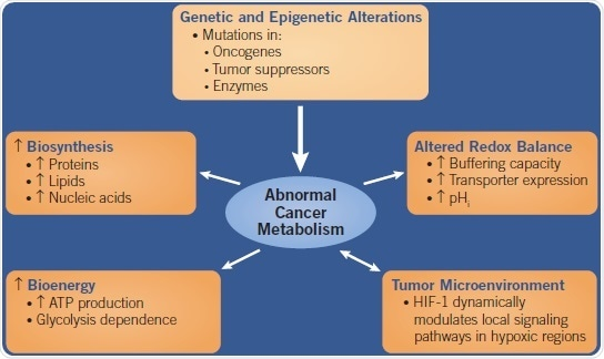 A flow chart showing the causes and effects of Abnormal Cancer Metabolism.