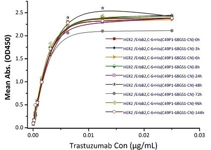 Immobilized Biotinylated Human Her2, His Tag (Cat. No. HE2-H822R) at 0.05 μg/mL (100 μL/well) can bind Trastuzumab. The result shows that the Biotinylated Human Her2, His Tag (Cat. No. HE2-H822R) is stable at 37℃ for 144 hours without performance reduction.