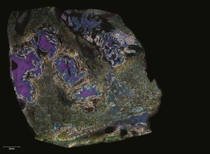 Cover image courtesy of Dr Jeff Spraggins, Mass Spectrometry Research Center at Vanderbilt University