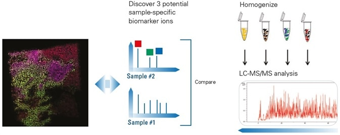 Locate Three Potential Biomarkers and Correlate with Pathology