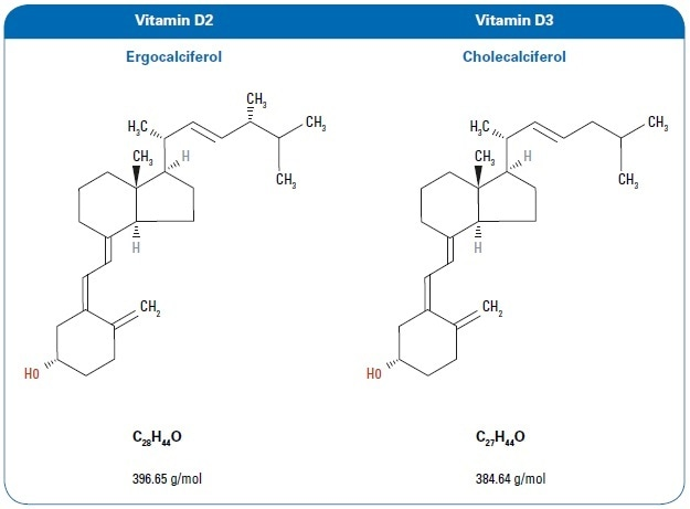 Chemical structure for vitamins D2 and D3.