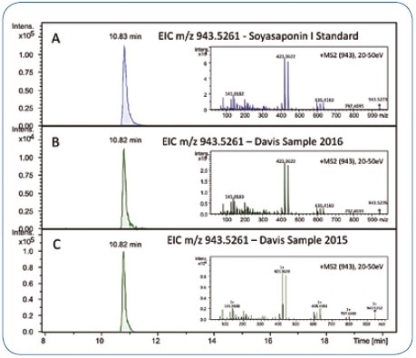 Retention time and MS/MS spectrum of the Soyasaponin I reference standard (A) match the chromatographic signal in the Davis food study samples reanalyzed in 2016 (B) and the corresponding data acquired in 2015 (approximately 12 months before) (C).