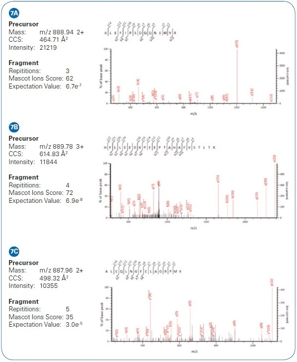 Example of low-intensity peptide matches from HeLa cell analysis via PASEF differ by only 2 Da. While their isotopic patterns overlap in m/ z, they are separated in the mobility dimension and the PASEF MS/MS results yield confident identifications.