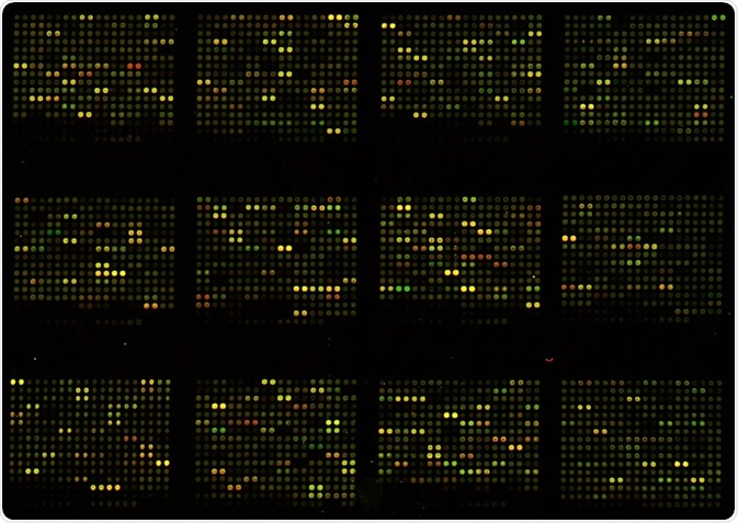 Microarrays have provided unprecedented benefits for researchers for many years, but are now being superseded by nanoarrays,