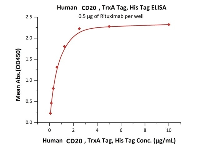 Immobilized Rituximab at 5 μg/mL (100 μL/well) can bind Human CD20, TrxA Tag, His Tag (E. coli) with a linear range of 78–2500 ng/mL.