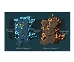 Scientists develop maps of two melatonin receptors vital for sleep, other biological processes