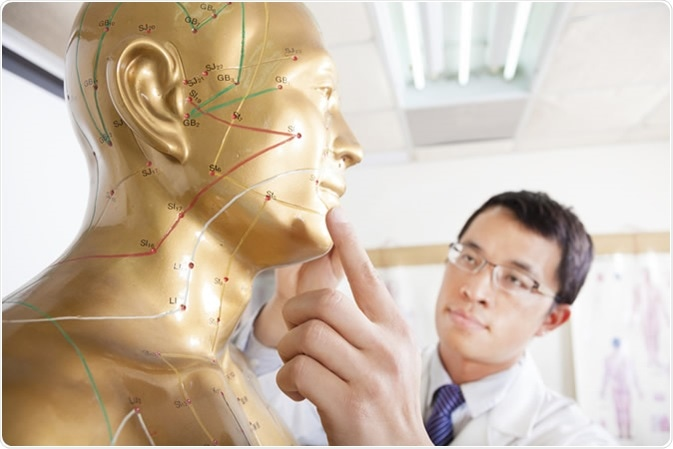 Chinese medicine doctor teaching Acupoint on human model. Image Credit: Tom Wang / Shutterstock