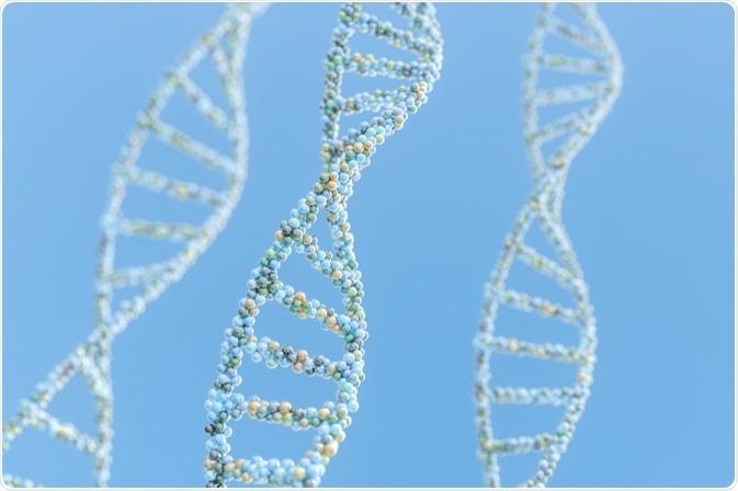 La historia de la DNA comenzó ya desde 5000 A.C., cuando los seres humanos comenzaron la práctica de la cría selectiva de producir cosechas y un ganado más robustos.