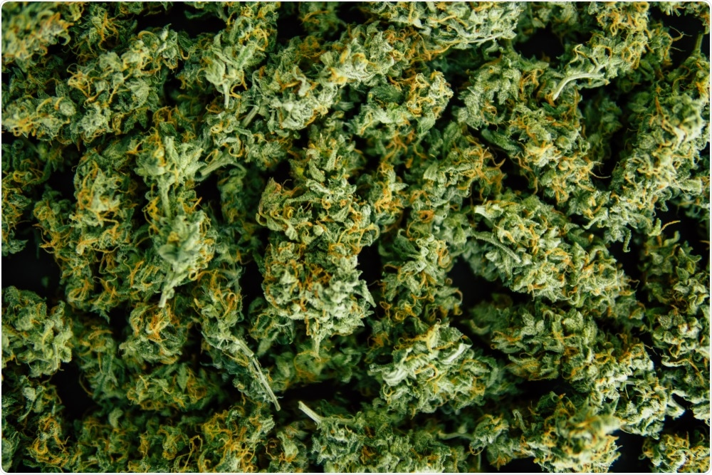 Using on-line nanoLC to detect traces of cannabis