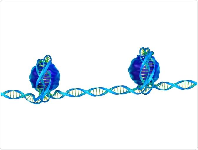El epigenetics sintetizado es un campo próximo de la biología.