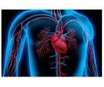 Study revolutionizes treatment principles for functional mitral regurgitation