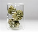 Which type of chromatography is best for cannabis analysis?
