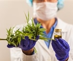 Cannabis could help people with opioid addiction