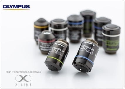 X Line Objective Lenses Break Optical Barriers with Simultaneously Improved Image Flatness, Chromatic Aberration Correction and Numerical Aperture
