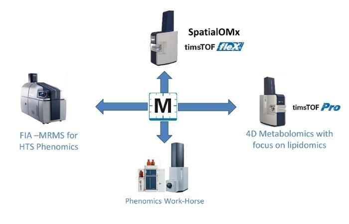Les solutions neuves de milliseconde pour le metabolomics de la deuxième génération